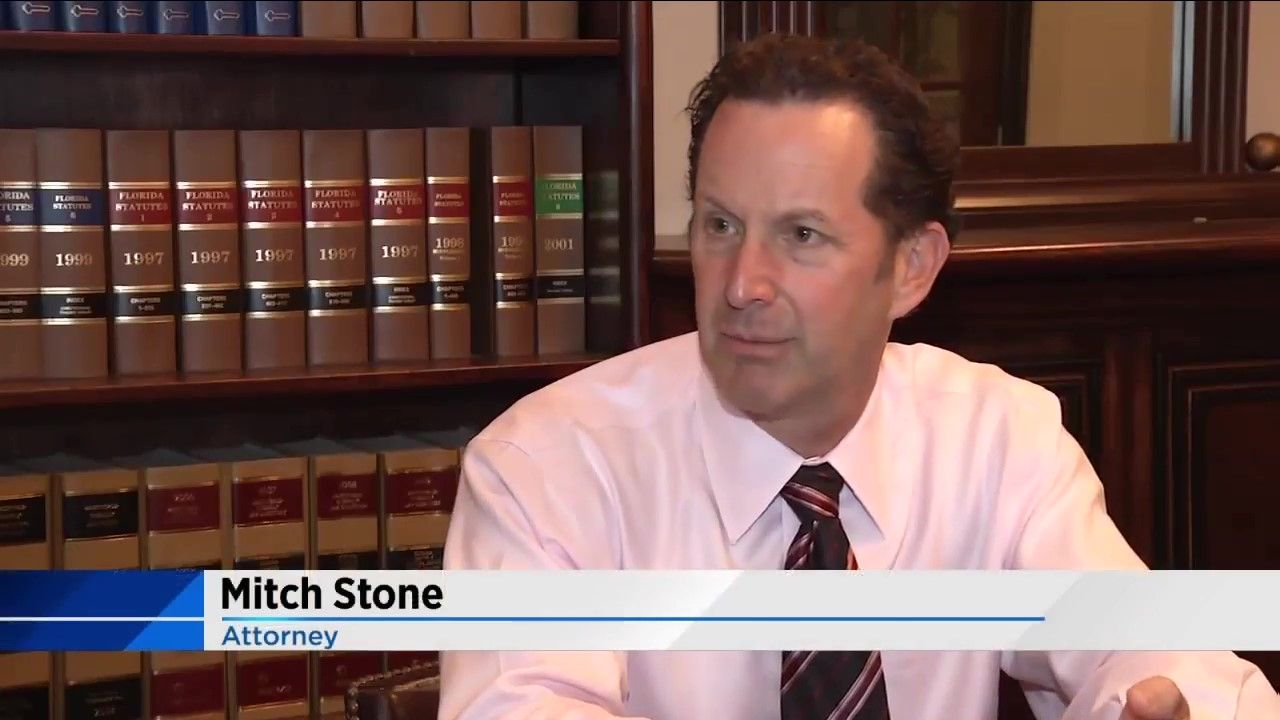 Mitch Stone featured on News 4 Jacksonville segment